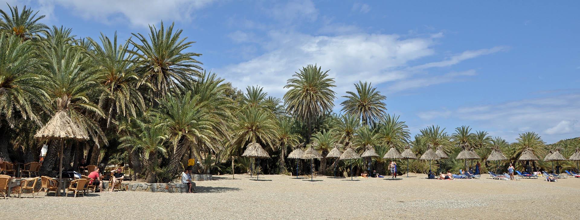 Vai palm forest & beach, Lassithi