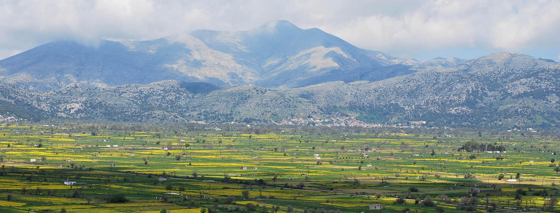 Lasithi Plateau, Lassithi