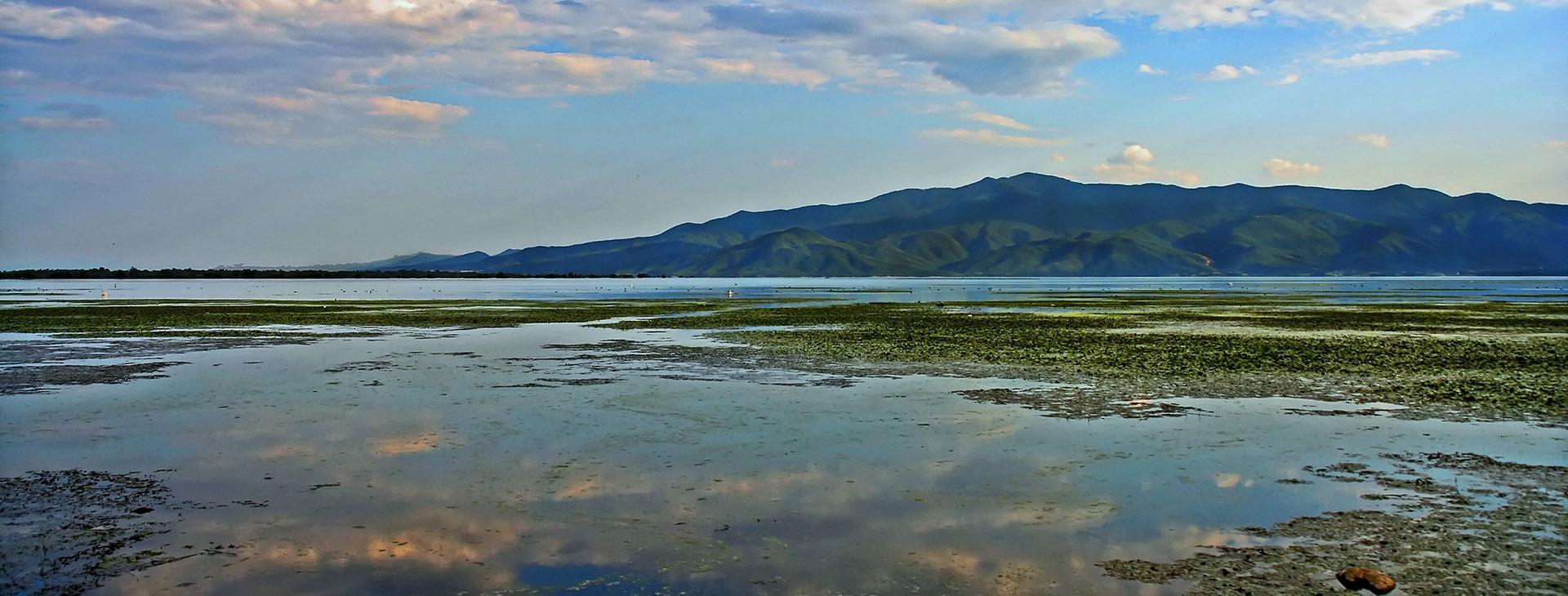 Kerkini lake, Serres